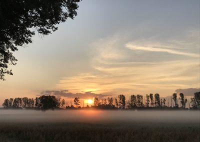 Nebel am Morgen von Katrin Wendland, Foto aus Friesack
