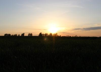 Sonnenuntergang in Pessin von Franka Gutsche, Foto aus Friesack