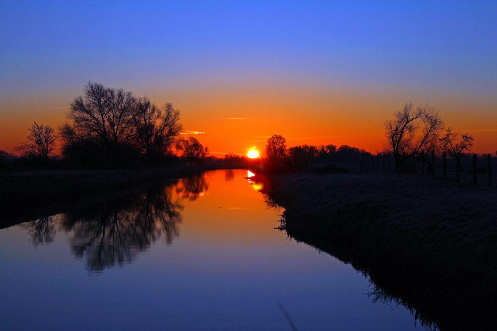 Fliederfest Sonnenuntergang von Detlef Schwarz, Foto aus Friesack