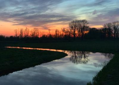 Fliederfest Abendlicher Ausklang von Jessica Macevic, Foto aus Friesack